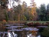 arboretum vo Fotu