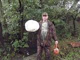 vatovec obrovský
