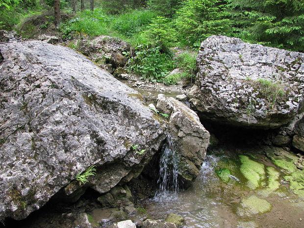 355dee1af Nahuby.sk - Fotografia - vodopády na potoku Malý Lipník v ...